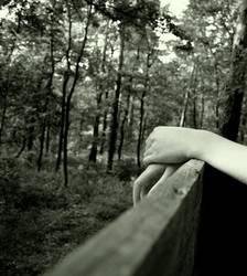 Die Einsamkeit des Wesens