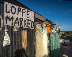 flohmarkt | antikapitalismus