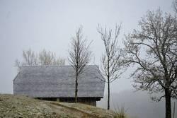 kalter Novembertag im Schwarzwald
