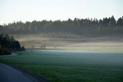 on the road again | an einem nebligen Herbstmorgen