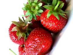 Erdbeer Traum