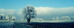 ...like snow!