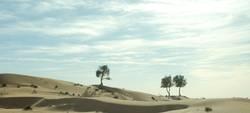 Wüstenmeer