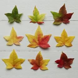 der Herbst ist bunt