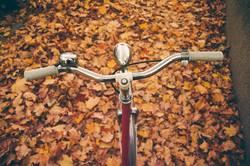Sonntägliche Radtour