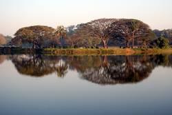 Mirror Image in Morning Light
