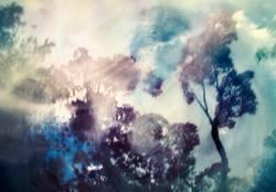 natural abstraction