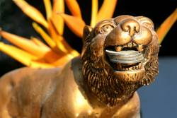 golden lion holds coins close-up