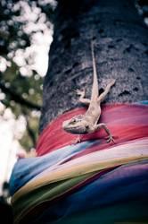 Reptil am Baum