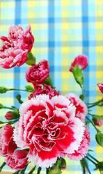 Karo-Blume