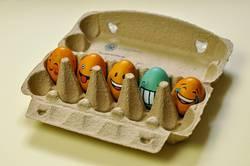 egg-gang im eierkarton