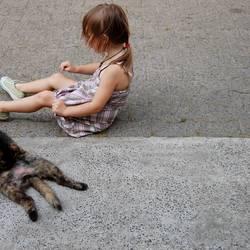 katzen und kinder ..