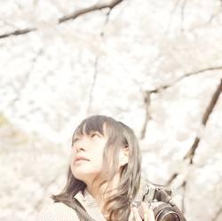 sakura #5
