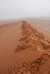 wet desert