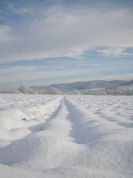 Schneeflucht