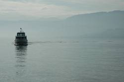 Morgendämmerung am Zürichsee
