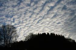Lambs Clouds
