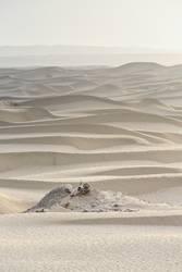 Misty dawn over sand dunes-TaklaMakan desert-Xinjiang-China-0342