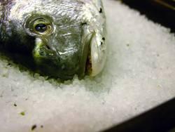 fischsein