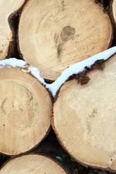 Frostiges Holz