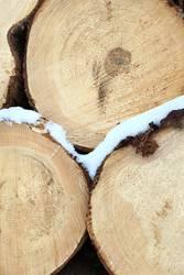 Frostiges Holz 3