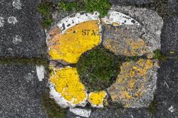 Streetart VII