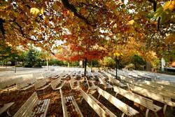 Herbstlich sonnige Tage