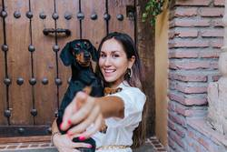 cute small sausage dog sitting with her owner at home