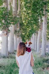 young beautiful woman holding her cute small dog on shoulder
