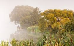 Fishing on foggy lake. Fisherman with rods