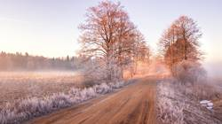 View of frozen road in early spring. Misty morning