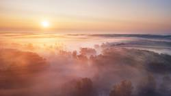 Summer nature landscape aerial panorama. Foggy morning