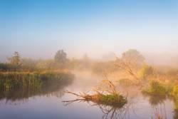 Autumn foggy rural sunrise. Sunny morning on river