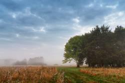 Overcast misty sky. Cloudy autumn foggy morning.