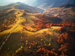 mountain autumn landscape. meadow and colorful forest