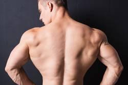 powerful bodybuilder back