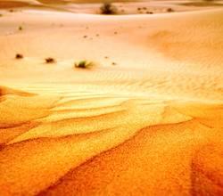 Wüstengold
