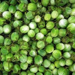 Für dich solls quietschgrüne Früchte regnen