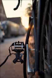Schwarzes Rennrad an Goldenem Oktober