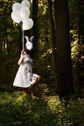 Follow the white rabbit II