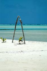 Aitutaki Dreams