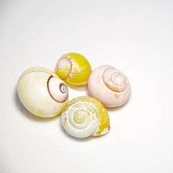 Geschnirkel in gelb und rosa