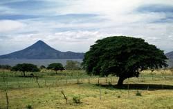 Momotombo