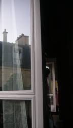 Pariser Spiegelungen