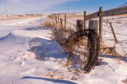 Roll of barbed wire in the snow on a fence in Canada