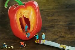 Miniwelten - Paprika(Kern) Ernte