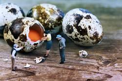 Miniwelten - So schälen Sie ein Ei