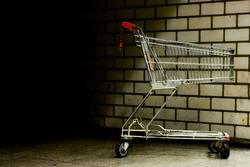 Ihr Warenkorb ist leer