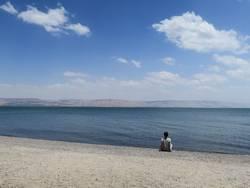 An seinem See