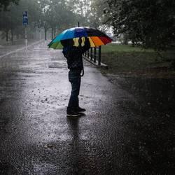 kleiner Junge unterm Regenschrim